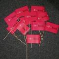 Papírové vlaječky mávátka - T-Mobile