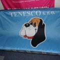 Textilní transparenty, PES tkanina - Tenesco