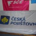 Reklamní vlajky - Česká pojišťovna